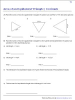 Area of an Equilateral Triangle | Decimal- Type 2