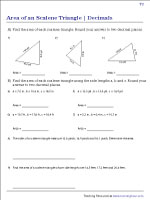 Area of Scalene Triangles Worksheets | Decimal - Type2